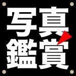 ishii_logo